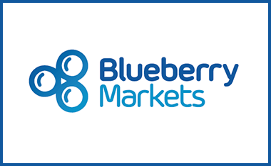 blueberry markets review listing image